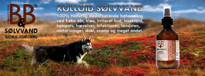 B&B Sølvvand til hunde - Naturlig desinficering