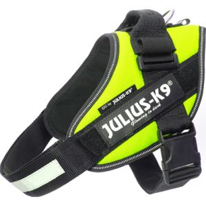 Julius K9 IDC-sele, Neon Grøn