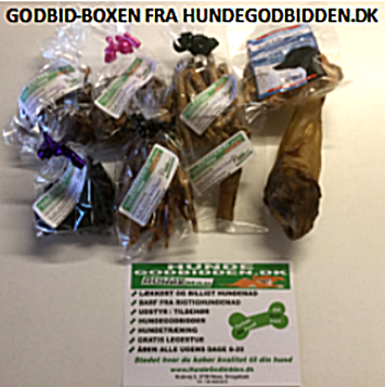 Godbid-Boxen  Forkæl din hund en gang månedlig