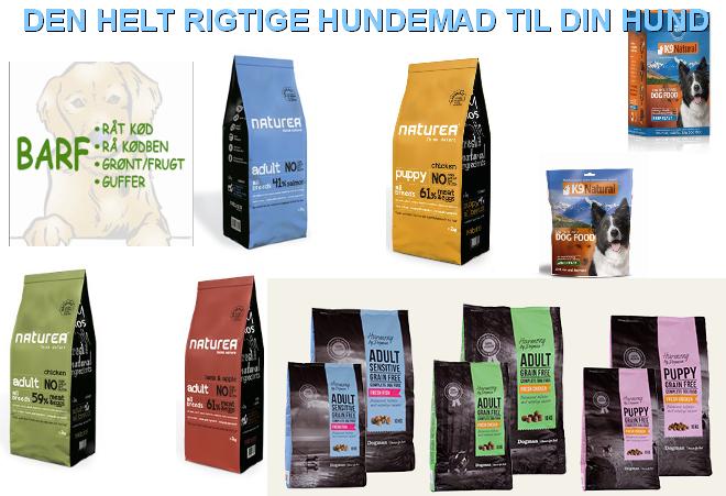DEN_HELT_RIGTIGHUNDEMAD_TIL_DIN_HUND