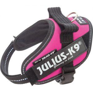 Julius K9 IDC-sele, Dark Pink