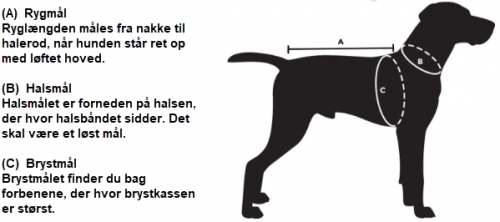 Måleskema Hundetøj